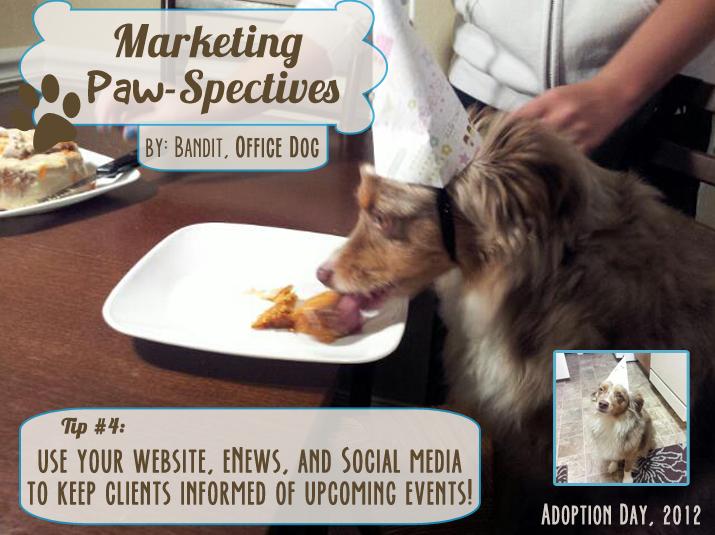 Marketingpawspectivestip4