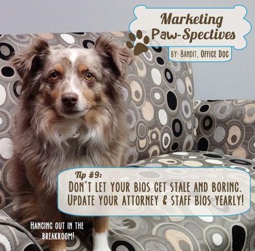 Marketingpawspectivestip9 copy