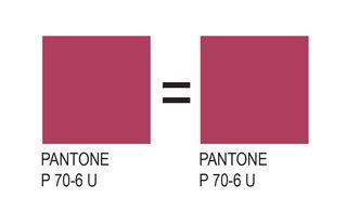 Pantone-03