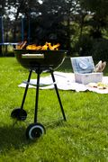 Bigstock-Picnic-Grilling-time-Grill-48068282