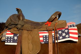 Bigstock-Patriotic-Saddle-988194