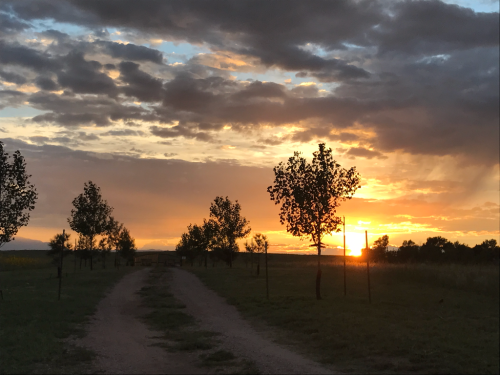 Sunset at Legacy Ranch