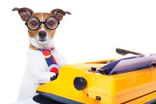 Bigstock-Secretary-Typewriter-Dog-89575580